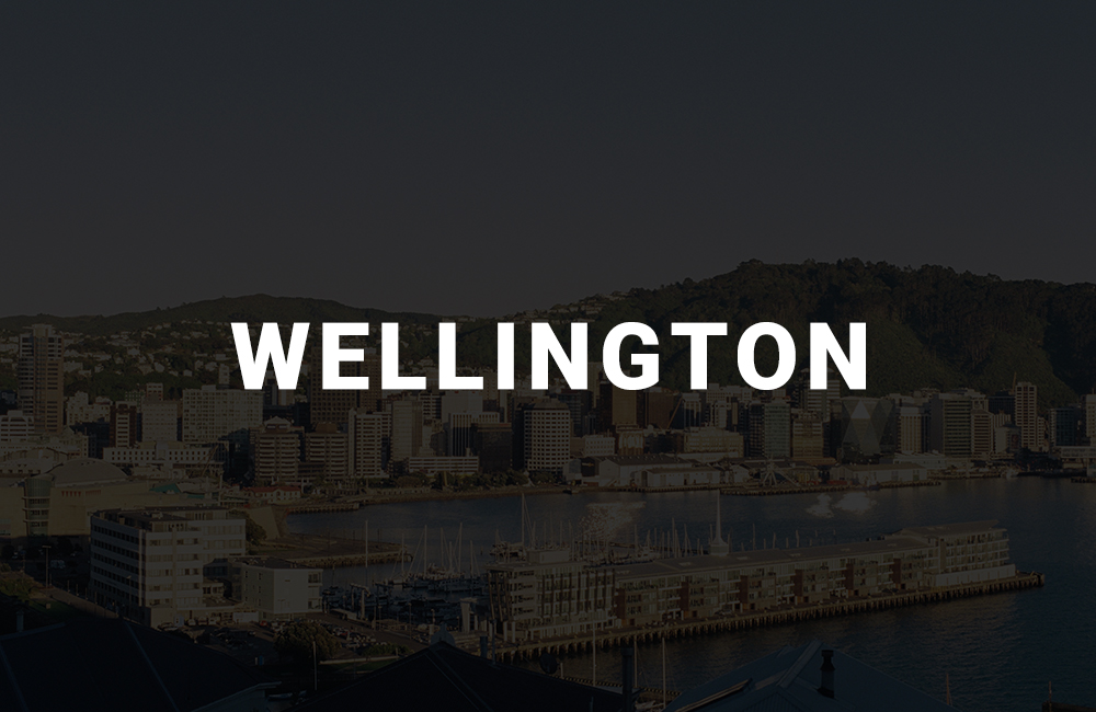 app development company in wellington