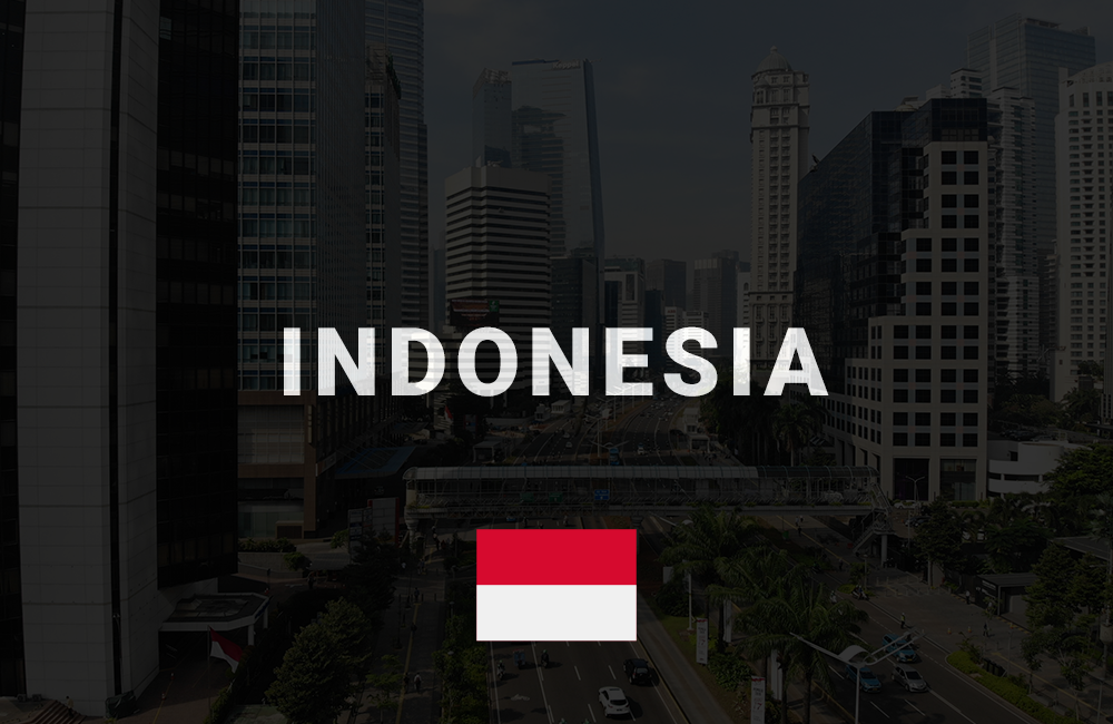 app development company in indonesia